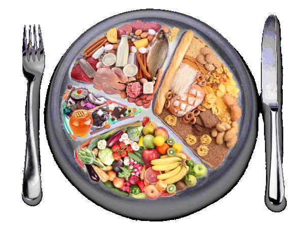 Naturopathie Audit Nutritionnel
